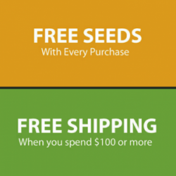 is it safe to order cannabis seeds online