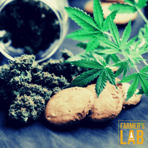 Cannabis Seeds Shipped Directly to Your Door in Arroyo Grande, CA. Farmers Lab Seeds is your #1 supplier to growing Cannabis in Arroyo Grande, California.