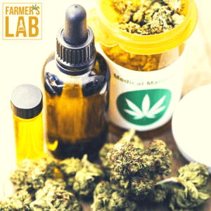 Cannabis Seeds Shipped Directly to Your Door in Bainbridge, GA. Farmers Lab Seeds is your #1 supplier to growing Cannabis in Bainbridge, Georgia.