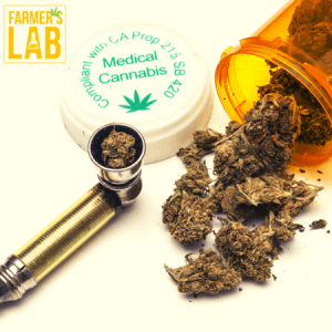 Cannabis Seeds Shipped Directly to Your Door in Chanute, KS. Farmers Lab Seeds is your #1 supplier to growing Cannabis in Chanute, Kansas.