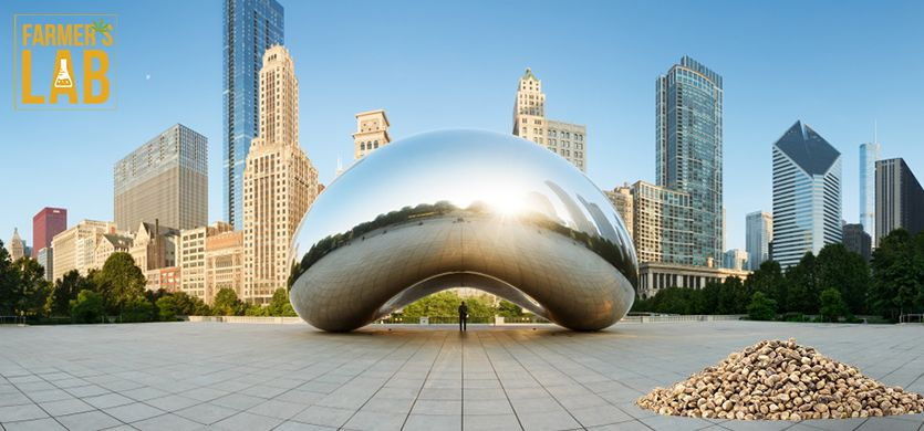 Buy Cannabis (Marijuana) Seeds Shipped Directly to Chicago, Illinois. Growing weed in Chicago, IL is now easy with the help of Farmers Lab Seeds.