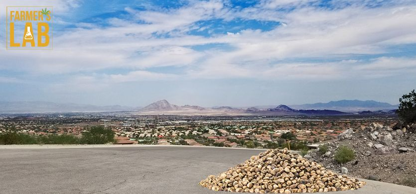 Buy Cannabis (Marijuana) Seeds Shipped Directly to Henderson, Nevada. Growing weed in Henderson, NV is now easy with the help of Farmers Lab Seeds.