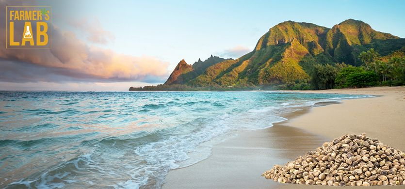 Buy Cannabis (Marijuana) Seeds Shipped Directly to Kaneohe, Hawaii. Growing weed in Kaneohe, HI is now easy with the help of Farmers Lab Seeds.