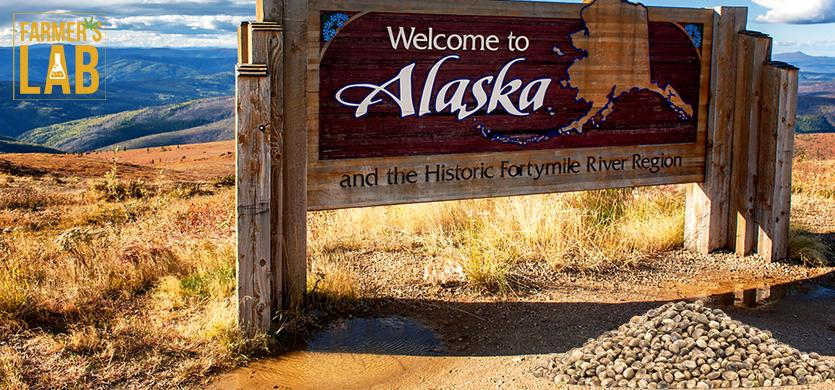 Buy Cannabis (Marijuana) Seeds Shipped Directly to Kenai, Alaska. Growing weed in Kenai, AK is now easy with the help of Farmers Lab Seeds.