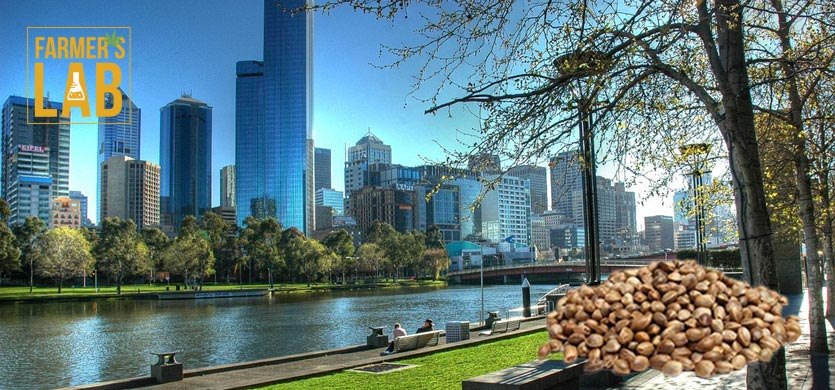 Buy Cannabis (Marijuana) Seeds Shipped Directly to Lakes Entrance, Victoria. Growing weed in Lakes Entrance, VIC is now easy with the help of Farmers Lab Seeds.