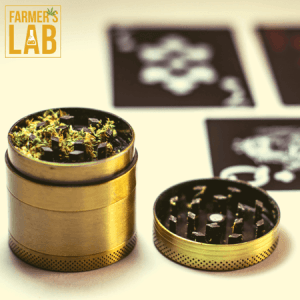 Cannabis Seeds Shipped Directly to Your Door in Oshawa, ON. Farmers Lab Seeds is your #1 supplier to growing Cannabis in Oshawa, Ontario.