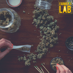 Cannabis Seeds Shipped Directly to Your Door in Vaughan, ON. Farmers Lab Seeds is your #1 supplier to growing Cannabis in Vaughan, Ontario.
