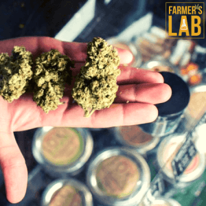 Cannabis Seeds Shipped Directly to Your Door in Wichita, KS. Farmers Lab Seeds is your #1 supplier to growing Cannabis in Wichita, Kansas.