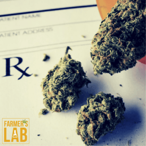 Marijuana Seeds Shipped Directly to Arkansas City, KS. Farmers Lab Seeds is your #1 supplier to growing Marijuana in Arkansas City, Kansas.