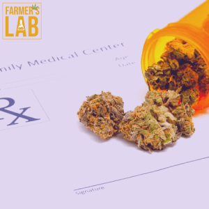 Marijuana Seeds Shipped Directly to Desbiens, QC. Farmers Lab Seeds is your #1 supplier to growing Marijuana in Desbiens, Quebec.