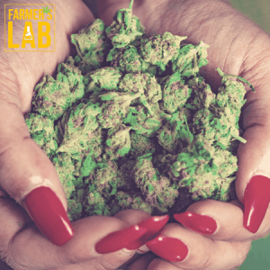 Marijuana Seeds Shipped Directly to Your Door. Farmers Lab Seeds is your #1 supplier to growing Marijuana in Kansas.