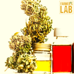 Weed Seeds Shipped Directly to Cornwall, ON. Farmers Lab Seeds is your #1 supplier to growing weed in Cornwall, Ontario.
