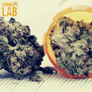 Weed Seeds Shipped Directly to Derby, KS. Farmers Lab Seeds is your #1 supplier to growing weed in Derby, Kansas.
