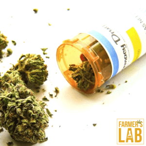 Weed Seeds Shipped Directly to Oatfield, OR. Farmers Lab Seeds is your #1 supplier to growing weed in Oatfield, Oregon.