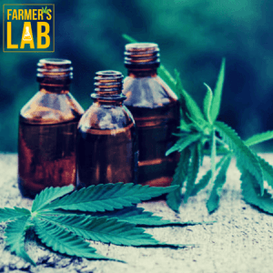 Weed Seeds Shipped Directly to South Weber, UT. Farmers Lab Seeds is your #1 supplier to growing weed in South Weber, Utah.